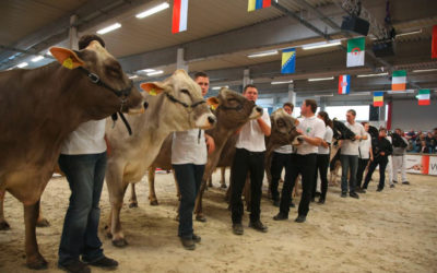 AGRARIA MESSE WELS